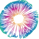cropped-PsychedelicsToday_logo_horizontal_color_LightBackground